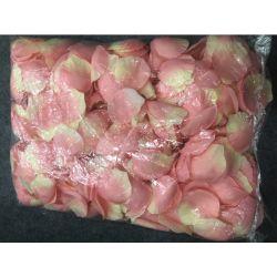 Fleur rose pétale Parti Marrige de mariage