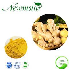 Prix de gros de gingembre en poudre chinois au gingembre naturel extrait de racine de gingembre séché l'air frais pour les soins de santé