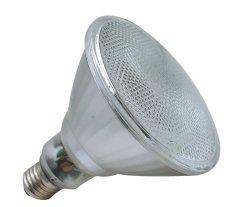 Lampe du réflecteur CFL de PARITÉ (CFLR02-PAR38)