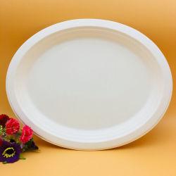 Biologisch Afbreekbare Middelgrote Oval Plate Paper Food-Schalen