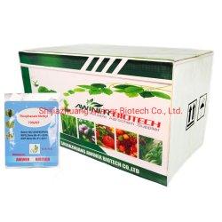 Altamente eficaz de controle da doença Agroquímica Topstn-Methyle 50%SC 70%WP