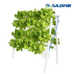 Tuyau de PVC modèle système de la culture hydroponique vertical pour les légumes feuilles