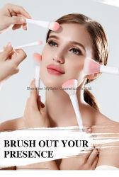 De privé Borstels van de Make-up van het Haar van het Etiket 17PCS Synthetische Kosmetische Geplaatst de Borstel van de Contour van de Stichting