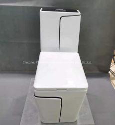 Home Standard bagno confortevole ceramica sanitaria WC