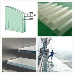 SGP/PVB 透明フィルムフラットカーブ強化 / 強化ラミネートガラス 建物および芸術の装飾のため