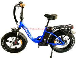 2021 새로운 디자인 레이디 프레임 여성용 전기 자전거 E-바이크 지방 타이어 전기 자전거 공장