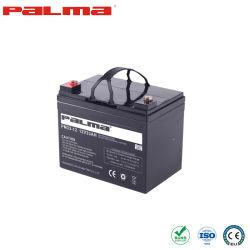 Palma UPS accu loodzuuraccu opslag China productie 5-4 Loodzuuraccu's lege batterij Deep Cycle/Dry Charge batterij