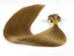 """22の""""ケラチンの平らな先端の毛の拡張引かれる最もよいバージンのRemyの人間の毛髪のハニーブロンドのまっすぐで厚い毛の端のほぼ倍"""