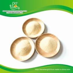 Hot vender 40-80 Ajo deshidratado de malla de gránulos con root