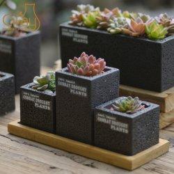 Usine de ciment peint pot avec soucoupe de bambou