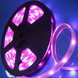 Lampada flessibile della striscia approvata Ce dell'indicatore luminoso di striscia di DC12V/24V LED LED