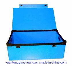 China Proveedor de Plástico PP hueco el paquete de verificación de los casos de cualquier color