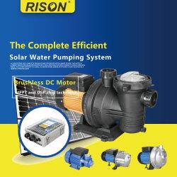 Haut de la qualité DC calme piscine solaire en acier inoxydable avec de la pompe à grand débit, 3 ans de garantie