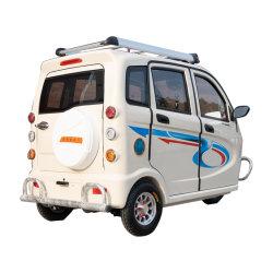 Al-Xfx China-elektrisches besichtigenauto CER elektrisches Auto