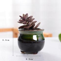 Prezzo conveniente Mini vasi in ceramica smaltata neve Plant Plant Plant Plant Plant Plant Plant Plant Plant Plant Plant