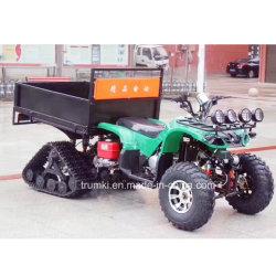 Utility ATV Farm Veículo 150cc de accionamento por corrente ATV Moto Japonês 250cc ATV