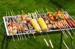 Griglia domestica esterna del BBQ del fornello della carne del cortile del patio