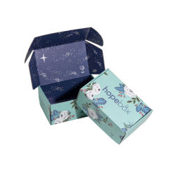 Ropa personalizada envases de papel corrugado Mailer Caja de regalo