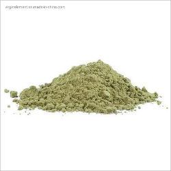 Polvere verde naturale clorogenica dell'estratto del chicco di caffè dell'acido 100% di alta qualità all'ingrosso di Sullpy