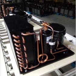 Kühlraum Verdichter-verwendetes kondensierendes Minigerät 1/3