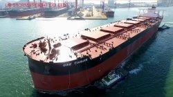 싼 화물 운송 업체/운송 회사/물류 운송 컨테이너 FCL/LCL을 통해 로 UAE Amazon/Dubai/Jebel Ali/Abu Dhabi/Sharjah, DDU와 함께