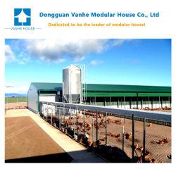 Prefabricated 자동적인 강철 집 강철 건물 가금을 건축하게 쉬운 10000마리의 닭 제조자를 위해 유숙하십시오