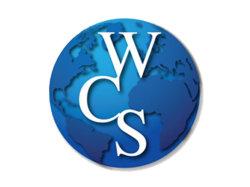 De geautomatiseerde Intelligente Software van het Beheer van het Pakhuis - Wms Wcs Wes