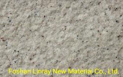 外部の花こう岩は質の石の終わりのスプレー式塗料を模倣する