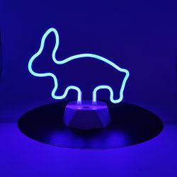 3W 건전지는 LED 유연한 주문 네온사인 빛 지구를 지원했다