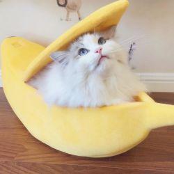 Роскошные формы бананов Lucky Пэт памяти из пеноматериала Cat кровати из ПЭТ
