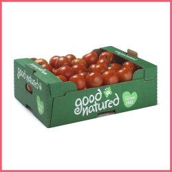골판지 신선한 토마토 트레이 과일 트레이