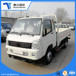 Mini Light Lorry Flatbed/Flat Bed/Cargo Body Truck