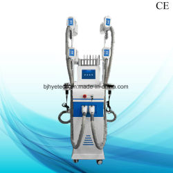 De professionele Apparatuur van het Verlies van het Gewicht van het Verlies van de Machine van het Vermageringsdieet Cryolipolysis Vette