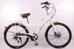 Fahrrad der Stadt-26inch hinteres 6speed, Kreuzerfahrrad, Fahrrad, Scheibenbremse