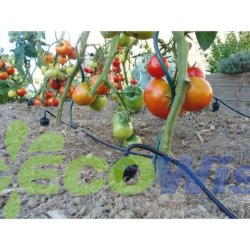 Системы капельного орошения садов соблазнительные Китая производителя