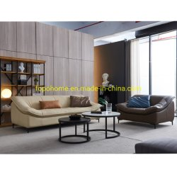 2021 Novo design do mobiliário chinês moderno mobiliário de sala de estar sofá em pele escura fp-FC6