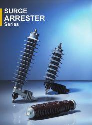 Polymerische untergebrachte Zink-Oxid-Blitzüberspannungs-Überspannungsableiter-Serie