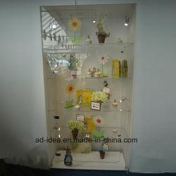 ロックが付いているアクリルの飾り戸棚か実用的なアクリルの記憶の表示