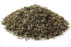 De haut grade thé biologique Maojian chinois du thé vert