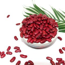 2019 guter Farben-langer Form-talentierter Fertigung chinesischer Whoesale Export-rote weiße Bohnen