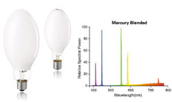 Mercury Light Blended Bulb/Lamp 160With250With500With1000W