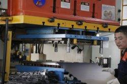 型のOEM ODM好ましい価格の打つ型の工場を押す進歩的な押すツールのシート・メタルを押すこと