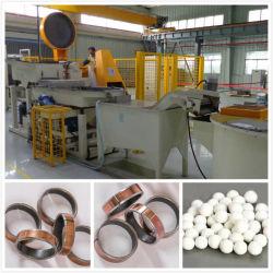 Nettoyage des roulements à billes en métal de fer polissant le système de finissage centrifuge automatique de disque