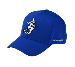 Kundenspezifisches förderndes Panel-Polyester der Baumwollschutzkappen-Qualitäts-6 unterstützen voll erwachsener Flexfit Hut befestigte Baseballmütze