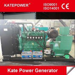 100Ква / 80квт звуконепроницаемых генератора двигатель Cummins бесшумный дизельный генератор