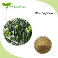 Fabricante de Alimentación Natural Extracto de la hoja de oliva puro con Oleuropein