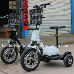 350W du moteur du moyeu de roue Electric Motorcycle 3 Zappy Scooter électrique