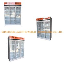 Équipement de réfrigération congélateur avec 1000L