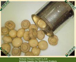 Les conserves de champignons champignon de 400g