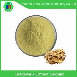 Природные Scutellaria извлечения с 90% Baicalin от традиционной китайской травяной медицине